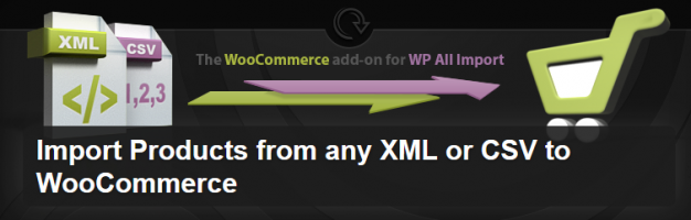 Plugin Import Products from any XML or CSV to WooCommerce