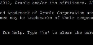 Sau khi đăng nhập thì toàn bộ dòng lệnh sẽ là SQL