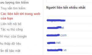 Chuyển sang tab này để xem domain nào đang link tới bạn