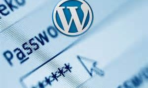 Wordpress Password