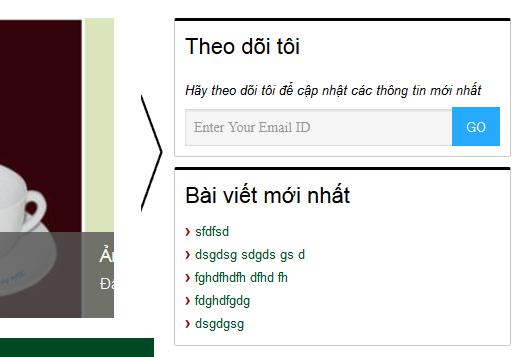 WordPress Multicolor Subscribe Widget hiển thị trên sidebar của tôi thật đẹp