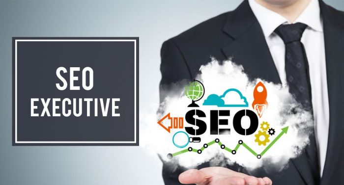 SEO excutive